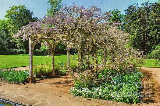 Garden Arch  by Vicki Spindler