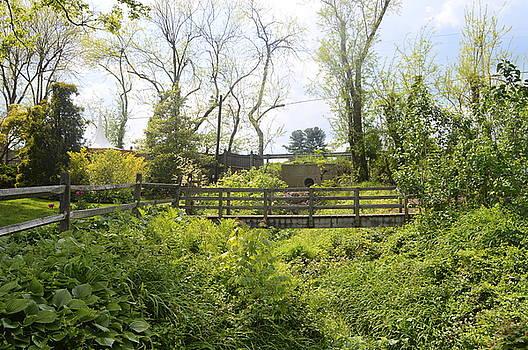 Garden Bridge-Ladew Gardens by Judith Morris