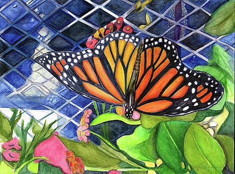 Garden Center Monarch by Elaine Hodges