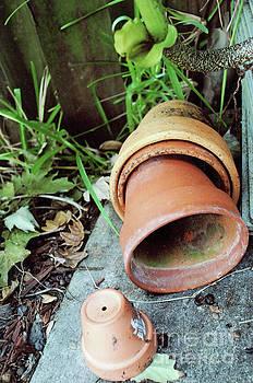 George D Gordon III - Garden Clay Plant Pots