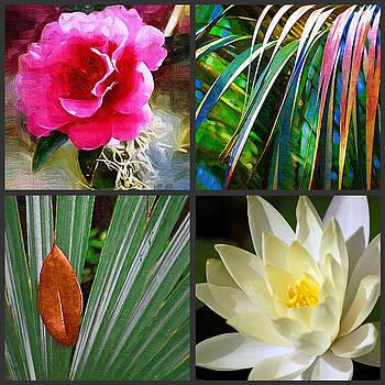 DONNA BENTLEY - Garden Collage