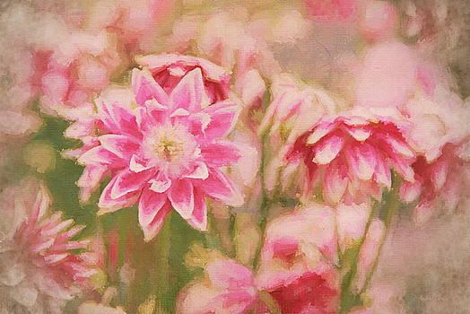 Andrea Kollo - Garden Delights