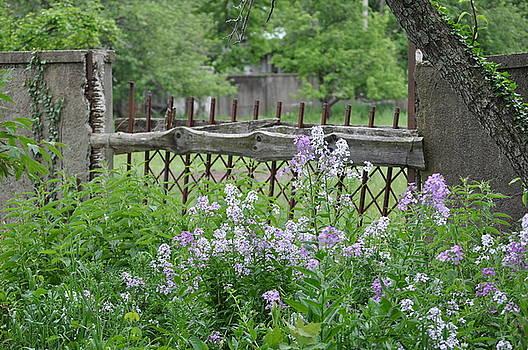 Garden Fence by Jenesse Studios