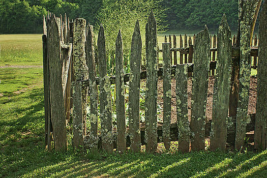 Nikolyn McDonald - Garden - Fence
