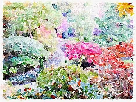 Rich Governali - Garden Flowers