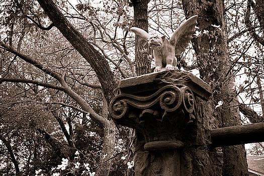 Garden Gargoyle  by Toni Hopper