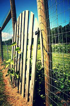 Garden Gate by Amy Layton