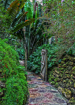 Garden Gate by Carol Orr Hartman