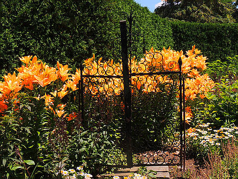 Garden Gate by Teresa Schomig