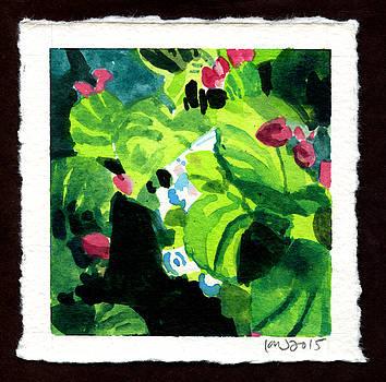 Garden by Ken Meyer jr