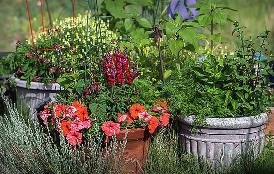 Garden of Flowers by John Brink