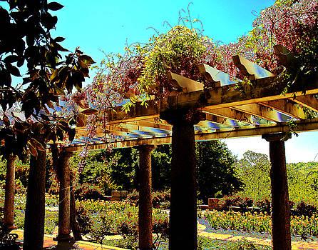 Garden of Paradise by Cindy Adams