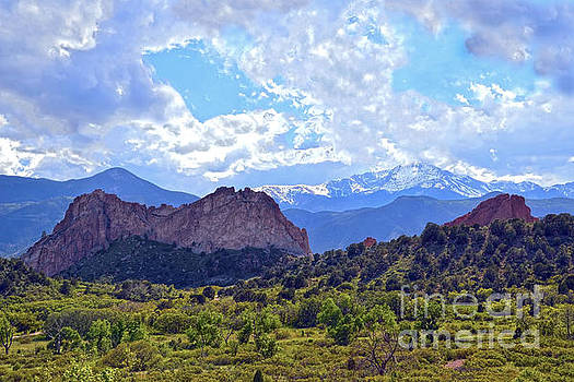 Garden of the Gods by Catherine Sherman