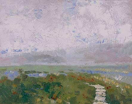 Garden Path by Coralie Donohue