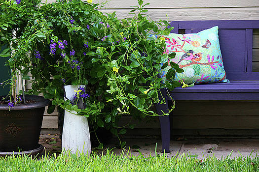 Garden Spot by Suzan Madison Casey