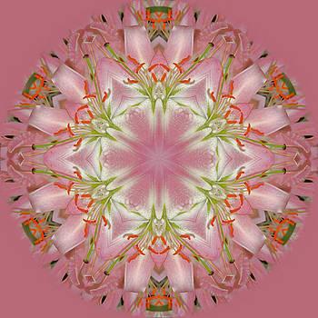 Garden Sprites by Deb Arkoosh