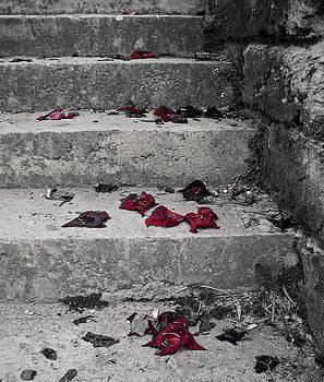 Garden Steps by Julia Raddatz