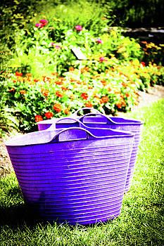 Garden Stroll by Amy Layton