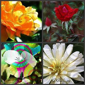DONNA BENTLEY - Garden Swirl