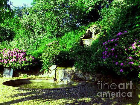 Garden by Ventsislav Iliev