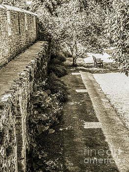 Lexa Harpell - Garden Walls - Bishops Palace Wells England