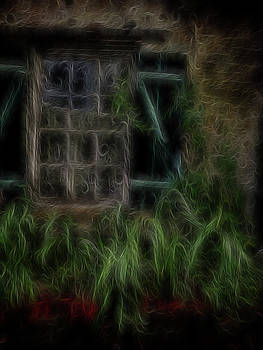 Garden Window 2 by William Horden