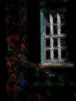 Garden Window 3 by William Horden