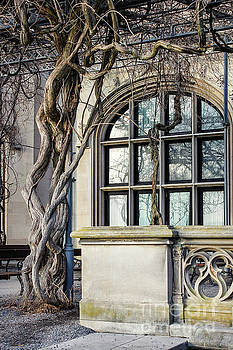 Garden Window And Vines by Todd Blanchard