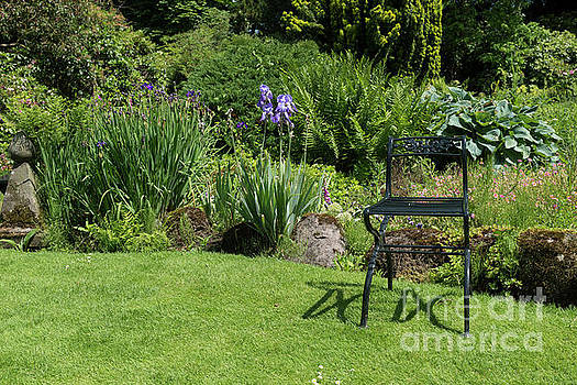 Garden With Green Metal Chair As Decoration by Compuinfoto