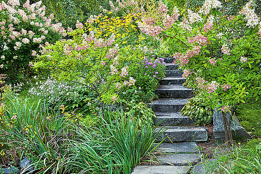 Garden With Stone Steps by Alan L Graham