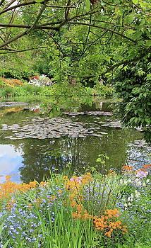 Garden with water lilies by Maria Preibsch