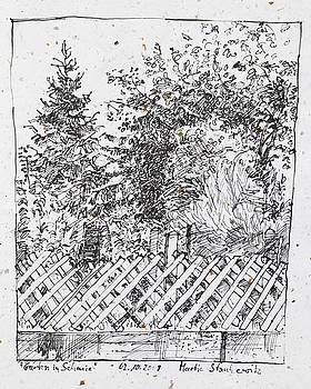 Martin Stankewitz - garden,fence and trees