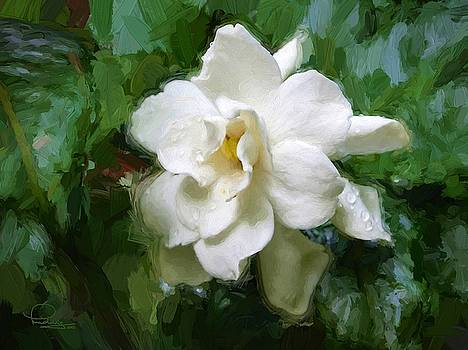 Ludwig Keck - Gardenia Blossom
