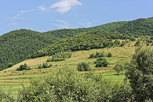 Gardening field near Orlat Sibiu county Romania by Adrian Bud