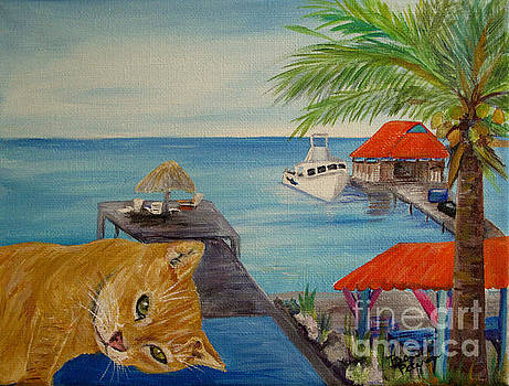 Garfield in Bonaire by Barbara Petersen