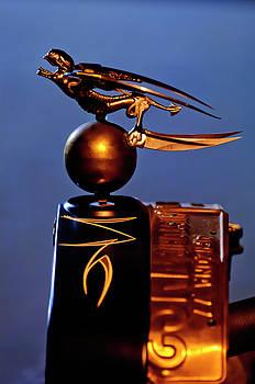 Gargoyle Hood Ornament 3 by Jill Reger