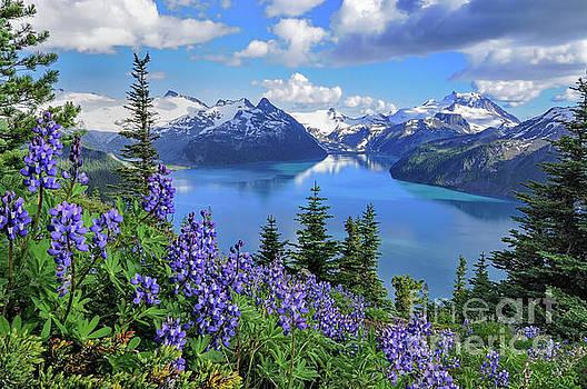 Garibaldi Lake  by Michael Wheatley