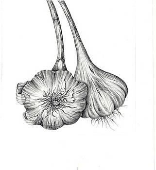 Garlic II by Elizabeth H Tudor