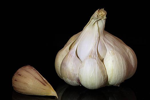 Vyacheslav Isaev - Garlic on a black background