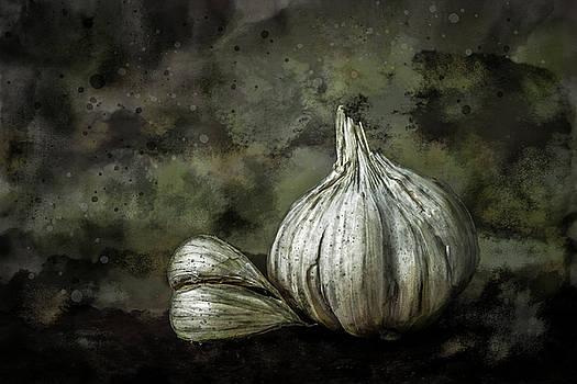 Garlic Still Life Color by Michael Arend