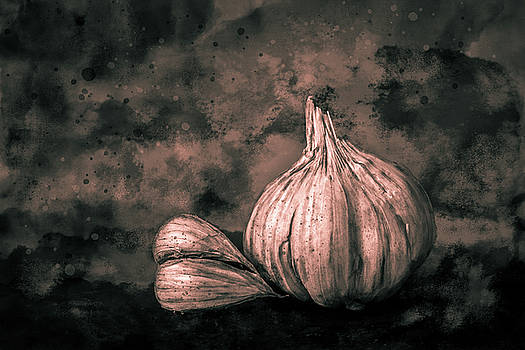 Garlic Still Life Toned by Michael Arend