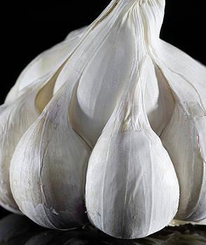 Vyacheslav Isaev - Garlic