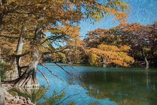 Garner Cypress 5218 by Fritz Ozuna