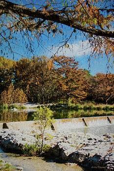 Garner Park Dam by Fritz Ozuna