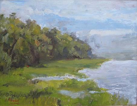 Gascoigne Bluff by Albert Fendig