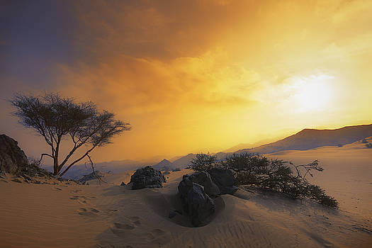 Dramatic Desert  by Khaled Hmaad