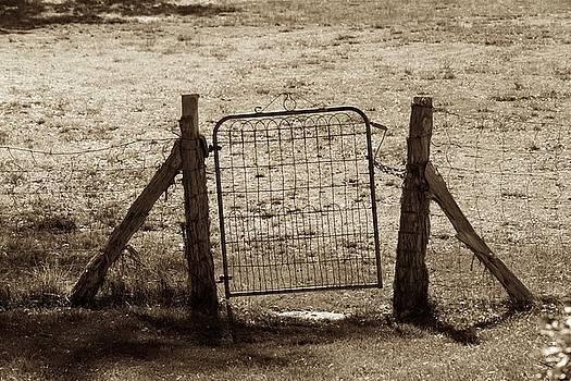 Gate Enough by Eric Tressler