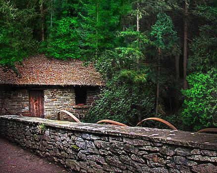 Gate Keeper's Home by Vicki Lea Eggen