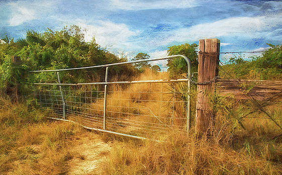 Gate by Nancie Rowan