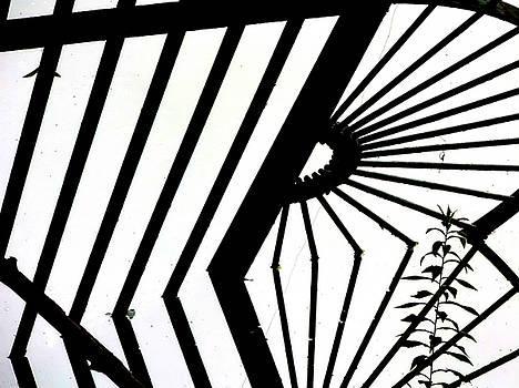 Gate Reflected by Kim Considine